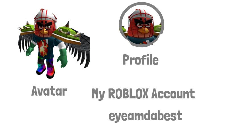 My ROBLOX Account